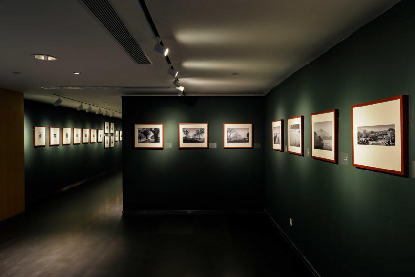 中國紫檀博物館橫琴分館