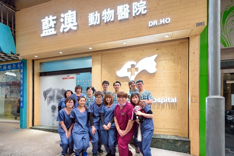 藍澳動物醫院