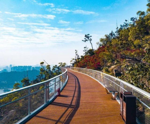 珠海景山道