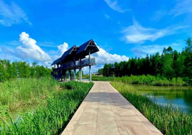 鬥門黃楊河濕地公園